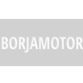 borjamotor200-166