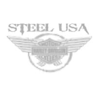 steelusa200